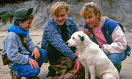 Actf content tv round the twist 3