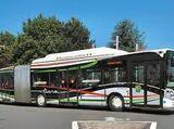 Bus Liane de Lille