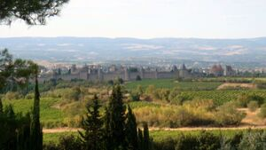 Cité de Carcassonne depuis aire de Belvédère A61 (1)