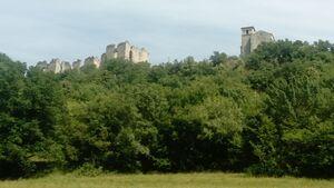D128 (26) Ruines du château de Soyans et chapelle Saint-Marcel