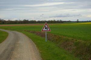 A1c in situ