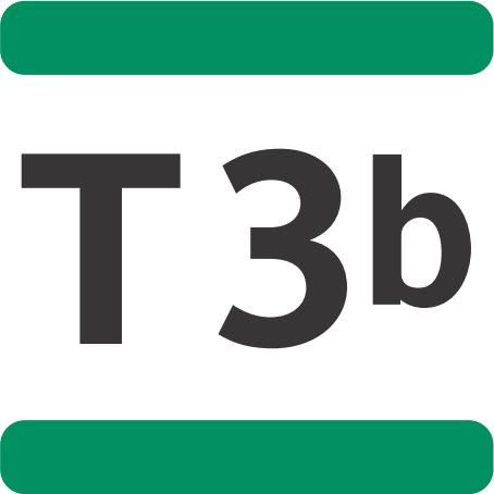 T3b Paris