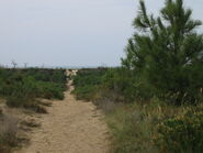 VRS-chemin vers la plage