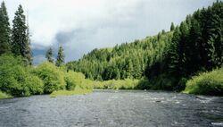 Fluviul Verde
