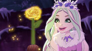 EW - ICQ - Crystal wonders the rose