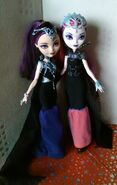 Raven and Evil Queen Doll photo