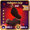 Valkyrie'sGrip