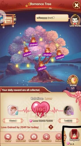 Wedding Guide: From The First Sight to LOVE | Royal Chaos Wiki