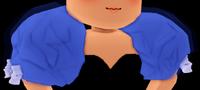 Princess Poofy Sleeves
