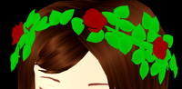 Lizzy's Crown of Roses