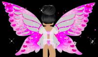 Social Love Butterfly