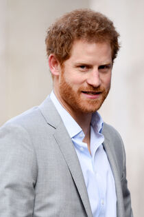 Harry-Sussex-2017.jpg