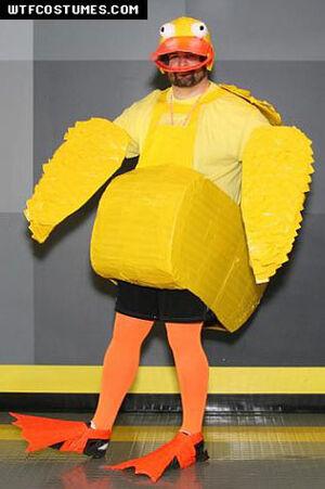 Duck-costume