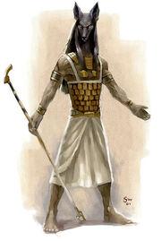 Anubis p141