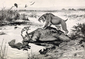 Smilodon and Canis dirus