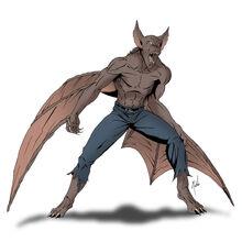 P morcego