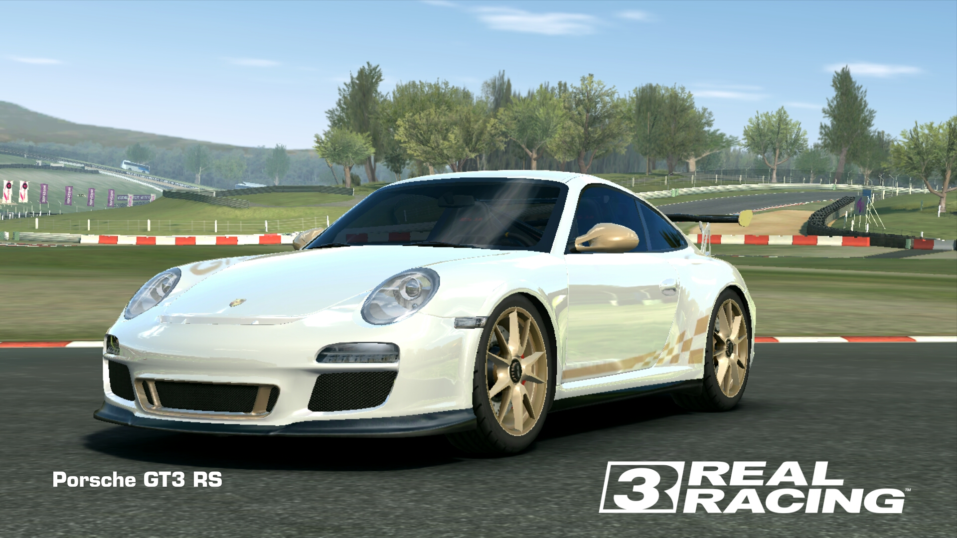 Showcase Porsche 911 GT3 RS