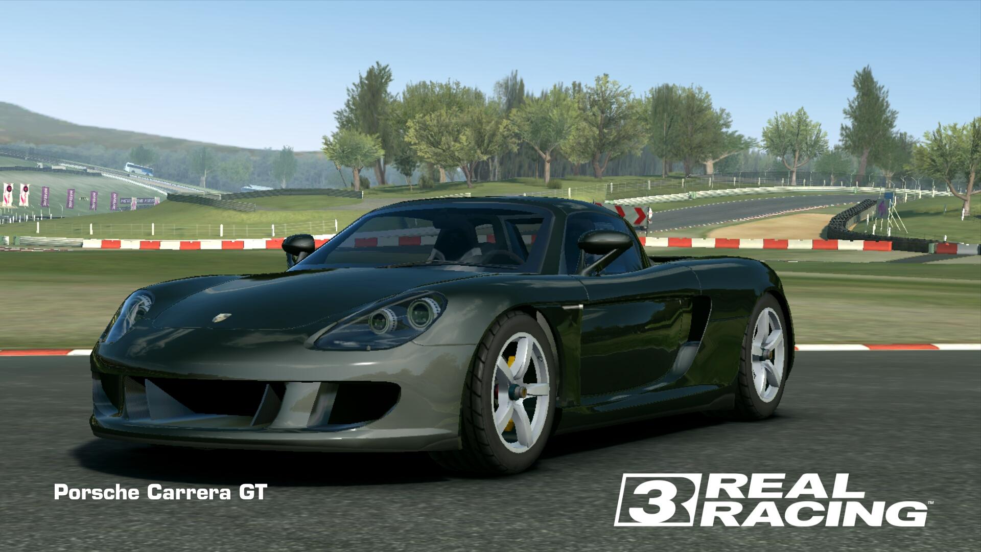 Showcase Porsche Carrera GT