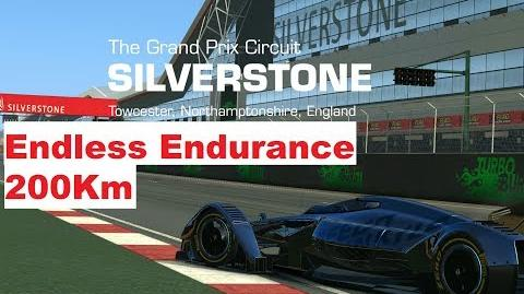 Endless Endurance MP4-X Silverstone-0