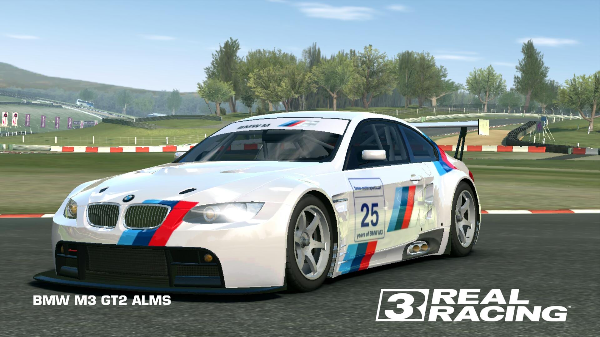 Showcase BMW M3 GT2 ALMS