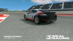 Porsche GT Racing Team No. 21 Cayman S (Back 2)
