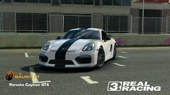 Cayman GT4 Cup