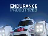 Endurance Prototypes