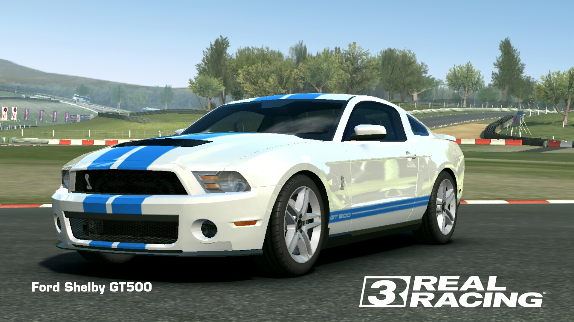 Showcase Ford Shelby GT500