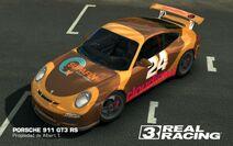 Albert Tasmani PORSCHE 911 GT3 RS