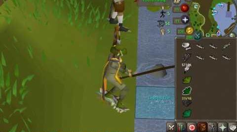 200M Fishing
