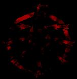 Foryx Blood Mark