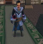 Ariston in the Warrior's Guild