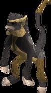 Monkey (black and brown) pet