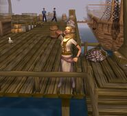 A day on the docks