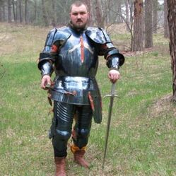 Idiot in plate armour