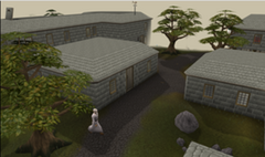 300px-Seer's Village