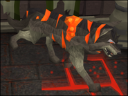 Warpedguarddog