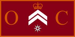 Oliver's Asgarnian Banner