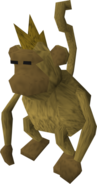 Harmless monkey