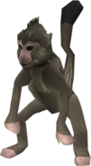MonkeyNew
