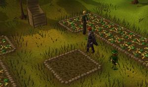 James farming2