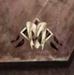 Символ белуганской гвардии