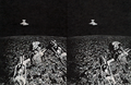BT31 stereoscopic photo.png
