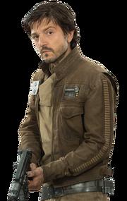 Cassian field jacket
