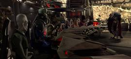 Separatist Council