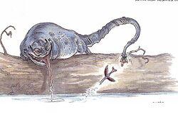 Blarth fishing