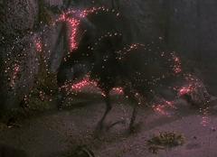 Raven metamorphosis BFE