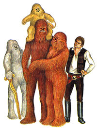 Chewie family and Han TWS