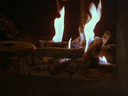 Fire at Noas