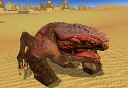 Wraid Tatooine